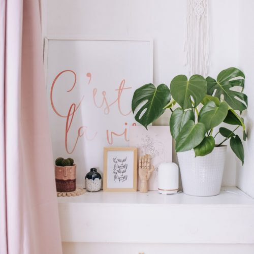 shelf featuring prints plants and neon wellbeing pod