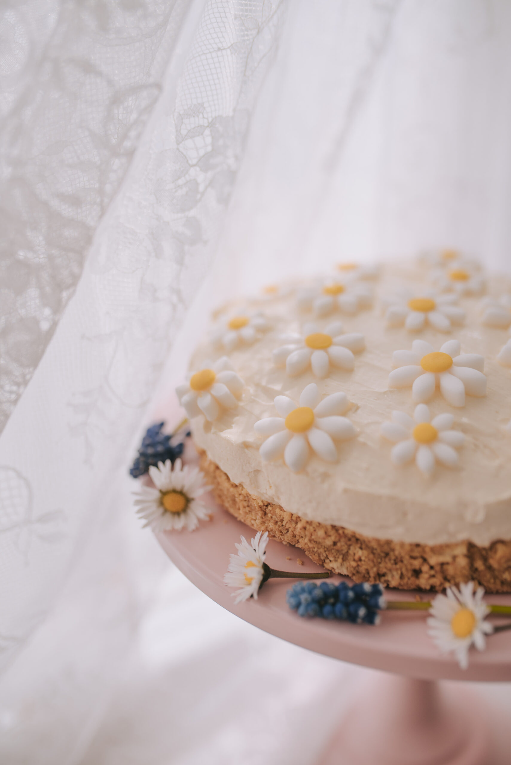 Fondant daisy cheesecake recipe, daisies on a pastel pink cake stand.